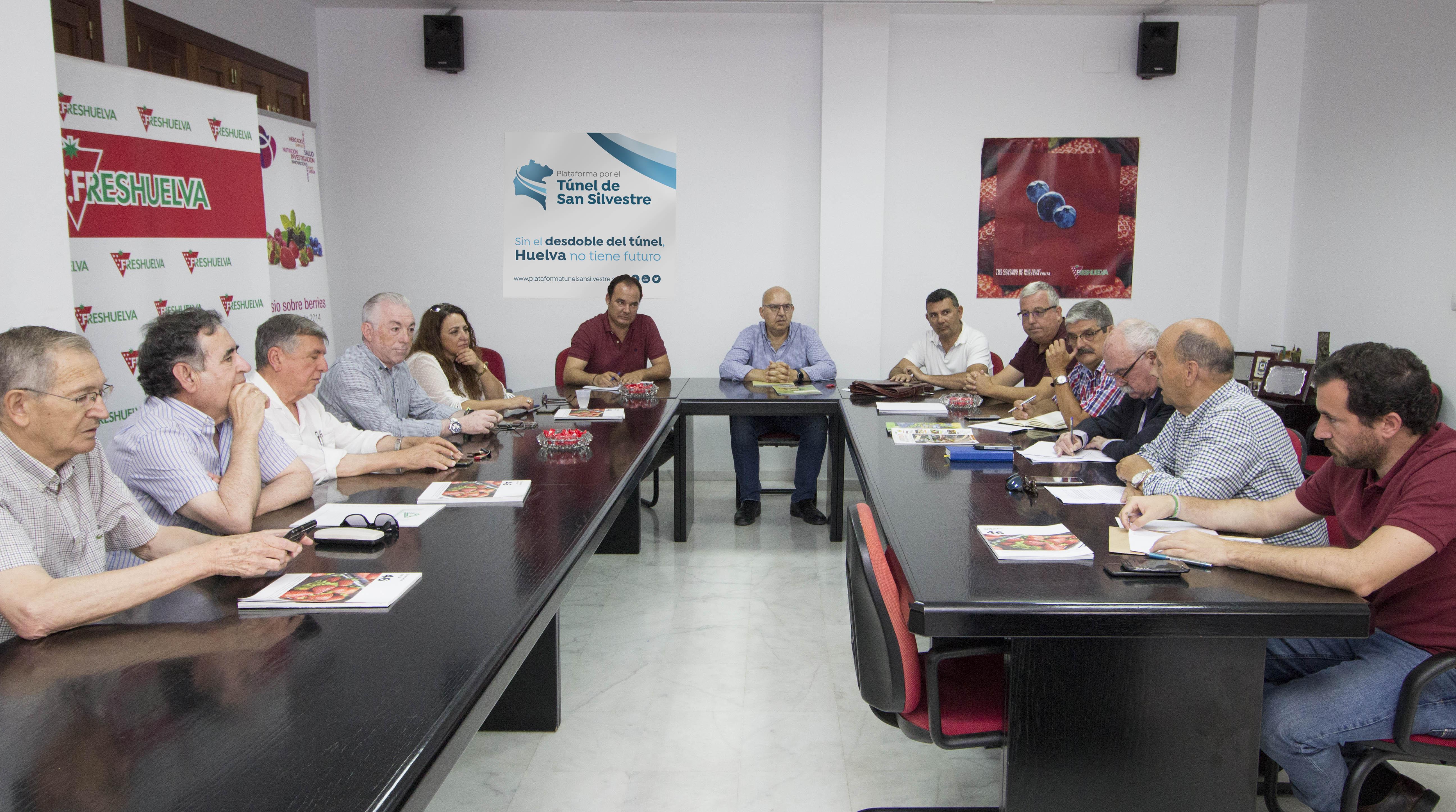 La Plataforma por el Túnel de San Silvestre solicitará un encuentro con la consejera de Agricultura