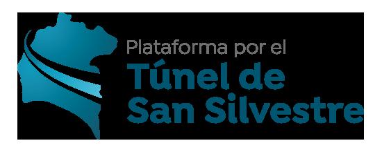 logo Túnel San Silvestre